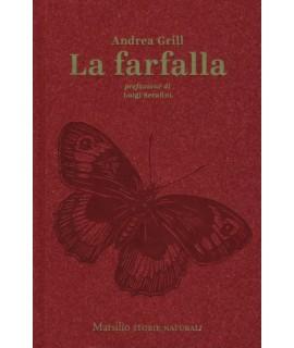 Animali Selvatici Farfalle Altri Insetti E Ragni